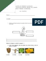 3º DE PRIMARIA evaluacion