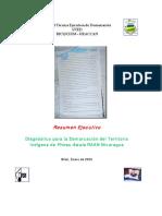 Diagnostico_Prinsu_Awala.pdf