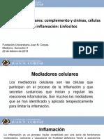 1. Mediadores celulares ACERO - CALIXTO (1).pdf