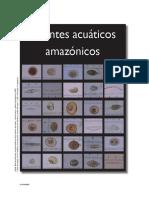 Gómez et al 2011 fitoplancton Yahuarcaca