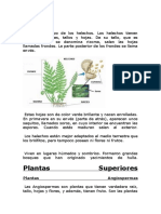 biologuia 1