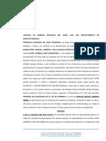 Proceso de Ejecución en la Vía - Academico
