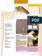 abeilles .pdf