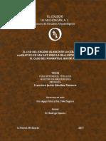SánchezTorneroFrancisoJavier2017Tesis.pdf