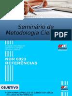 Seminário de Metodologia Científica.pptx