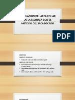 fisiologia  Vegetal stael.pptx