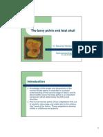Anatomy of Pelvis