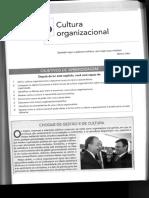 Comportamento Organizacional_Cap 16_Cultura Organizacional.pdf