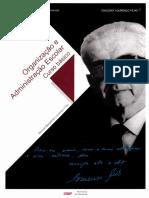 Organização e administração escolar curso básico.pdf