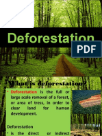 deforestation-shazard-141209053609-conversion-gate01