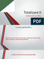totalizare2