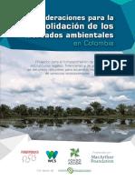 Consideraciones mercados ambientales.pdf