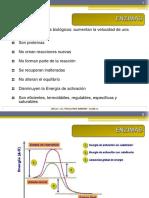 Clase-10-1 (enzimas)