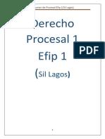 EFIP procesal largo