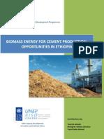 Biomass Cement[1]