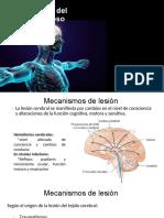 Semana 8_Fisiopatología del SNC I_ACV_2019 2