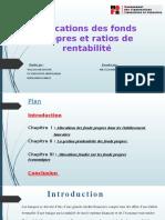Allocations des fonds propres et ratios de rentabilité.pptx