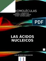 Las biomoléculas acidos nucleicos.pptx
