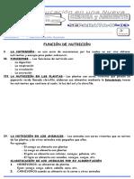 CCAM-04.doc
