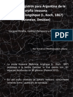 Presentación Primeros registros para Argentina de la araña invasora Badumna Longinqua
