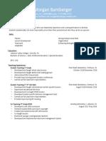 resume version 2 copy