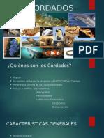 LOS CORDADOS 1