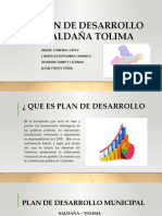 PLAN DE DESARROLLO SALDAÑA TOLIMA 2015-2019