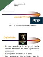 Teoria-23B-Hidatidosis.pdf
