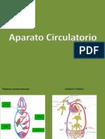 APARATO CIRCULATORIO MIRIDA (1)