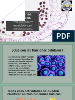 Funciones Celulares.pptx