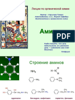 Амины_сайт.pdf