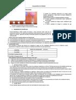 PRUEBA_CTA_3RO_SECUNDARIA