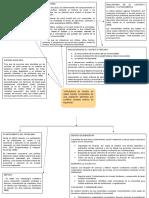 COMUNITARIA - organizador grafico