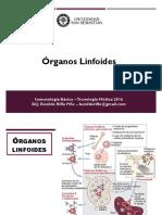 2 organos linfoides.pdf