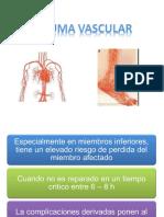 Trauma vascular1