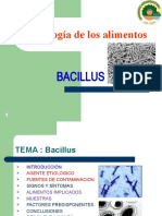 Expo Sic Ion de Toxicologia-bacillus