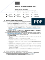 cronograma-serums-2020-1.docx