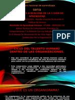 Diapositivas grupo Leafar (2)