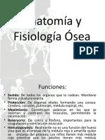 tema 1 Anatomía y Fisiología Ósea.ppt
