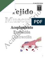 Acoplamiento Excitación-Contracción.pdf.pdf