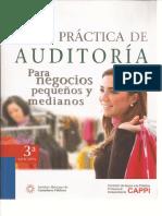 Guia Practica de Auditoria Para Negocios Pequenos y Medianos