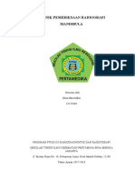 MANDIBULA.docx