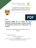 evaluacic3b3n-rc3a1pida-de-la-calidad-del-agua.pdf