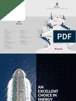 bull_company_profile.pdf