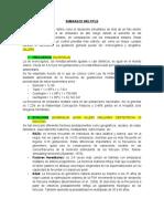 EMBARAZO MULTIPLE-1 modif