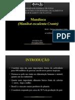 Melhoramento Da Mandioca - Manihot esculenta Crantz