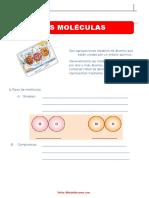 Las-Moléculas-para-Sexto-Grado-de-Primaria