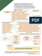 Relacion de causalidad. pdf