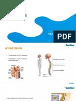 Presentacion_Higiene_postural.ppsx