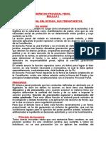 Derecho Procesal Penal Bolilla 1